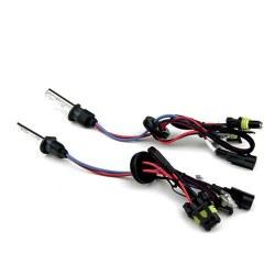 Ampoules xénon H1 35Watts de rechange - Vendues par paire